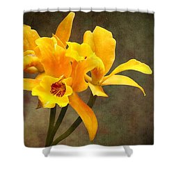 Orange Spotted Lip Cattleya Orchid Shower Curtain by Rudy Umans
