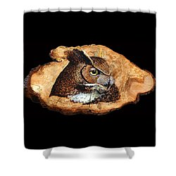 Owl On Oak Slab Shower Curtain