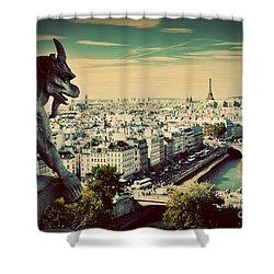 Paris Panorama France Shower Curtain by Michal Bednarek