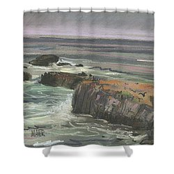 Shower Curtain featuring the painting Pescadero Beach by Donald Maier