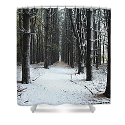 Pines In Snow Shower Curtain
