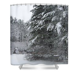 Powdered Sugar Shower Curtain by Eunice Miller