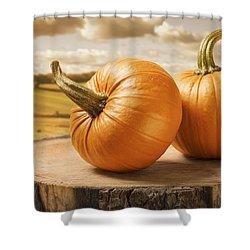 Pumpkins Shower Curtain by Amanda Elwell