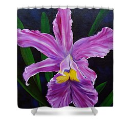 Shower Curtain featuring the painting Purple Orchid by Jenny Lee