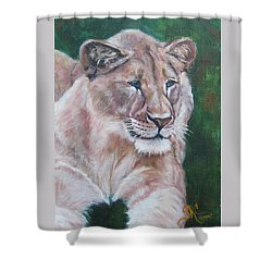 Queen Of The Beast,lioness Shower Curtain