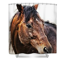 Resilience Shower Curtain by Belinda Greb