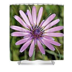 Salsify Flower Shower Curtain by George Atsametakis