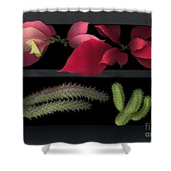 2 Seasons Shower Curtain