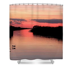 Seeking The Moment Shower Curtain by AR Annahita