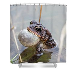 Singing A Love Song Shower Curtain