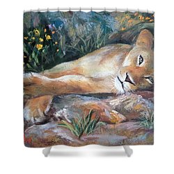 Sleep Lion Shower Curtain