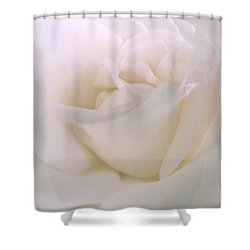 Softness Of A White Rose Flower Shower Curtain