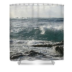 Song Of The Soul Shower Curtain