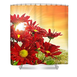 Spring Blossom Shower Curtain by Carlos Caetano