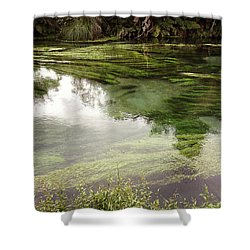 Spring Water Shower Curtain by Les Cunliffe