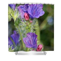 Spring Wild Flower Shower Curtain by George Atsametakis