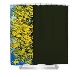 Spring Wild Flowers Shower Curtain by George Atsametakis