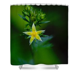 Starflower Shower Curtain