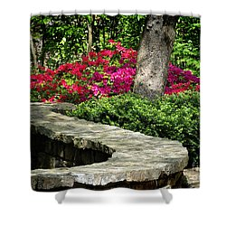 Shower Curtain featuring the photograph Stay On The Path by Nava Thompson
