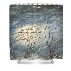 Storm  Shower Curtain by Irina Astley