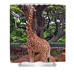 Stretching It Shower Curtain by Michele Myers