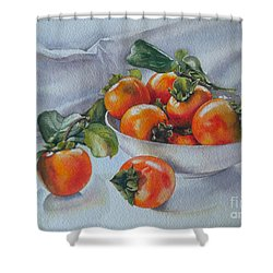 Summer Harvest  1 Persimmon Diospyros Shower Curtain