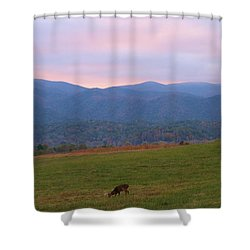 Sunrise In Cades Cove Shower Curtain by Dan Sproul