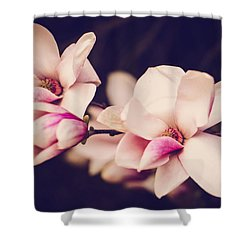 Sweet Magnolia Shower Curtain by Sara Frank