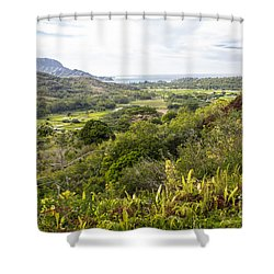 Shower Curtain featuring the photograph Taro Fields by Suzanne Luft