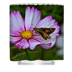 The Beauty Of Nature Shower Curtain by Frozen in Time Fine Art Photography