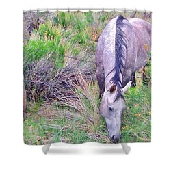 The Grass Is Always Greener Shower Curtain by Marilyn Diaz