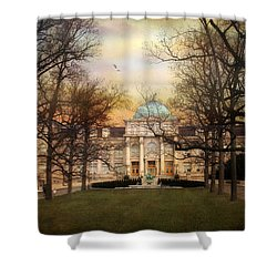 The Library Shower Curtain by Jessica Jenney