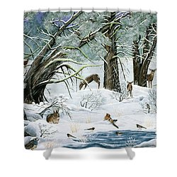 They Said It Wouldn't Snow Shower Curtain