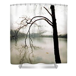 Twiggy Shower Curtain