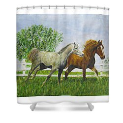 Two Horses Running By White Picket Fence Shower Curtain