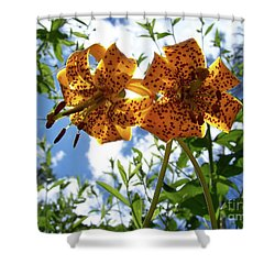 Two Tigers 'n' Sky Shower Curtain