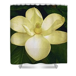 Vintage Magnolia Shower Curtain