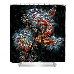 Weed Galaxy  Shower Curtain by Steve Harrington