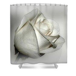 White Rose Shower Curtain by Sandy Keeton