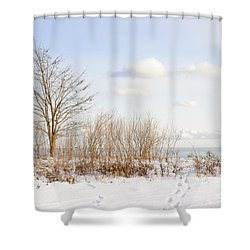 Winter Shore Of Lake Ontario Shower Curtain by Elena Elisseeva