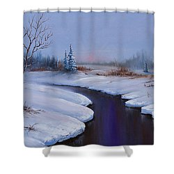 Winter Stillness Shower Curtain by C Steele