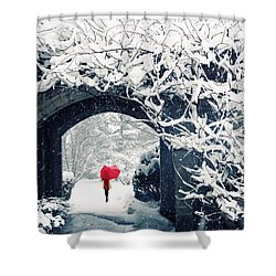 Winter's Lace Shower Curtain by Jessica Jenney