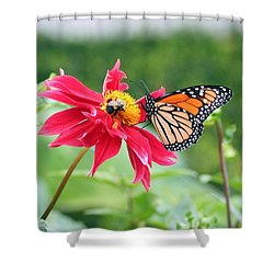 Shower Curtain featuring the photograph Working Together by Karen Silvestri