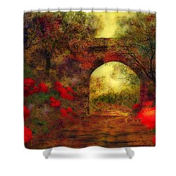 Ye Olde Railway Bridge Shower Curtain