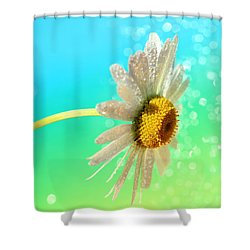 Still Life Shower Curtain by Heike Hultsch
