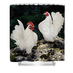 23. Pair White Serama Shower Curtain