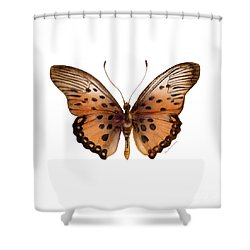 26 Trimans Butterfly Shower Curtain by Amy Kirkpatrick