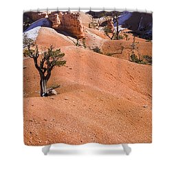 Bryce Shower Curtain by Muhie Kanawati