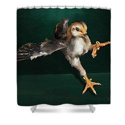 29. Yamato Chick Shower Curtain
