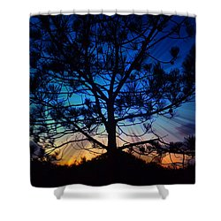 2nd Day Of Christmas Shower Curtain by Sharon Soberon